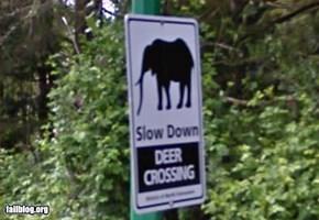 Deer Crossing Fail
