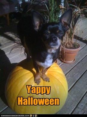 Yappy Halloween