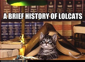 A BRIEF HISTORY OF LOLCATS