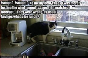 Escape?  Escape!?