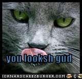 you looksh gud