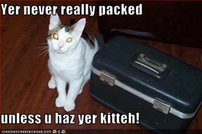 Yer never really packed  unless u haz yer kitteh!