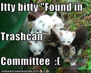 "Itty bitty ""Found in Trashcan"" Committee  :("
