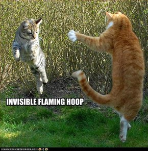INVISIBLE FLAMING HOOP