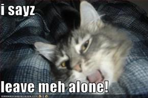 i sayz  leave meh alone!