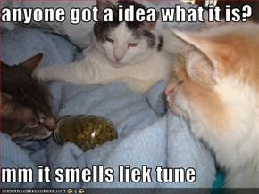 anyone got a idea what it is?  mm it smells liek tune