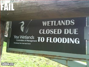 Wetlands Fail