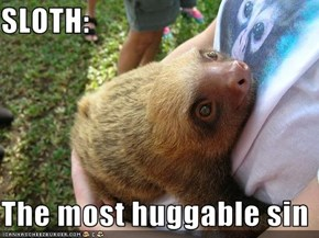 SLOTH:  The most huggable sin