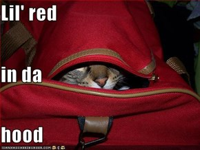Lil' red in da hood