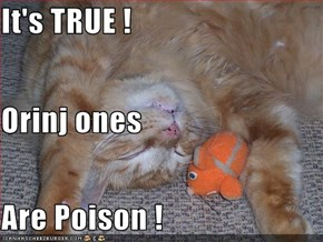 It's TRUE ! Orinj ones Are Poison !