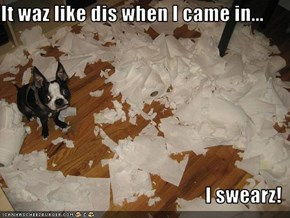 It waz like dis when I came in...  I swearz!