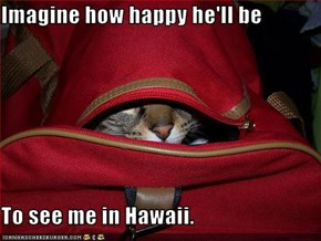 Imagine how happy he'll be  To see me in Hawaii.