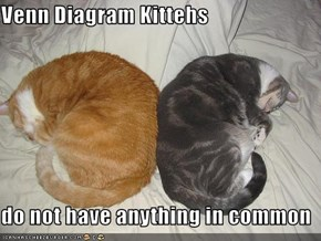 Venn Diagram Kittehs  do not have anything in common