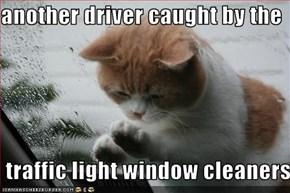 another driver caught by the   traffic light window cleaners