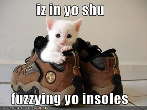 iz in yo shu  fuzzying yo insoles