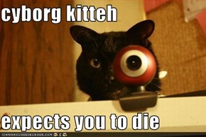 cyborg kitteh   expects you to die