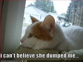 i can't believe she dumped me...