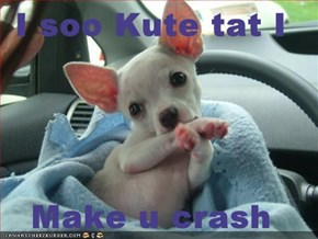 I soo Kute tat I  Make u crash