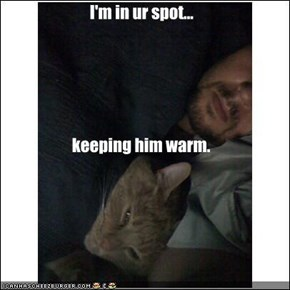 I'm in ur spot... keeping him warm.