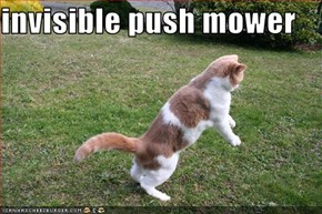 invisible push mower