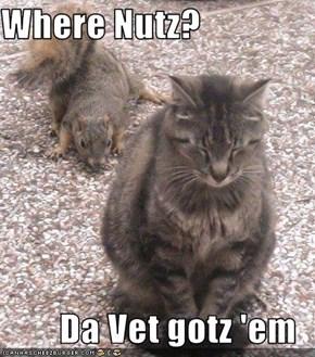 Where Nutz?  Da Vet gotz 'em