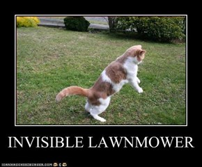 INVISIBLE LAWNMOWER
