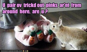 U  pair ov  trickd out  pinks  ar'nt  from  around  here,  are  u ?