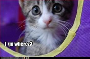 I  go wherez?
