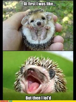 Hedgehog LoL