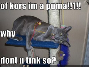 of kors im a puma!!1!! why dont u tink so?