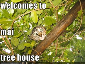 welcomes to mai tree house