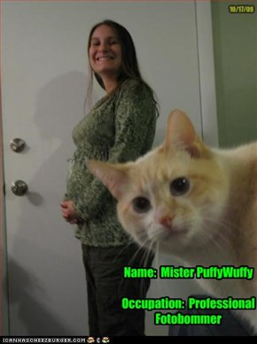 Name:  Mister PuffyWuffy  Occupation:  Professional Fotobommer