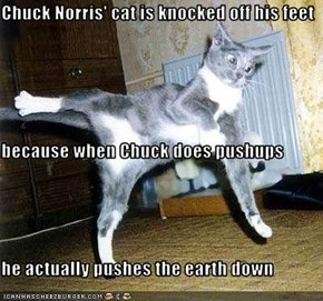 Chuck Norris' cat is knocked off his feet because when Chuck does pushups he actually pushes the earth down