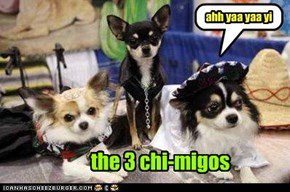 the 3 chi-migos