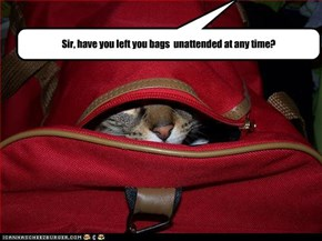 Sir, have you left you bags  unattended at any time?