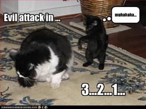 Evil attack in ...