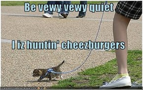 Be vewy vewy quiet I iz huntin' cheezburgers