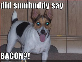 did sumbuddy say  BACON?!