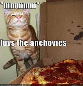 """mmmmm"" luvs the anchovies"