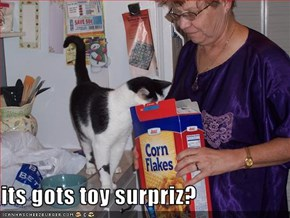 its gots toy surpriz?