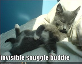 invisible snuggle buddie