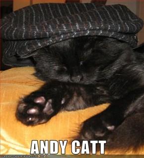 ANDY CATT
