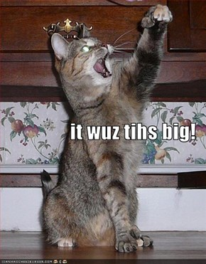 it wuz tihs big!
