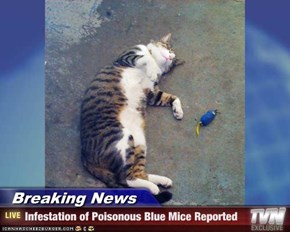 Breaking News - Infestation of Poisonous Blue Mice Reported