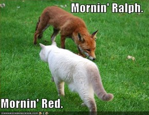 Mornin' Ralph.  Mornin' Red.