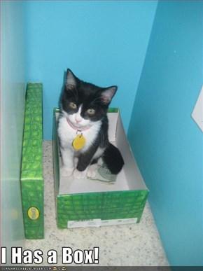 I Has a Box!
