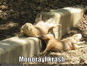 Monorayl krash