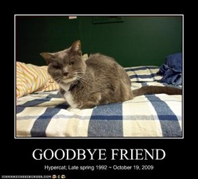 GOODBYE FRIEND