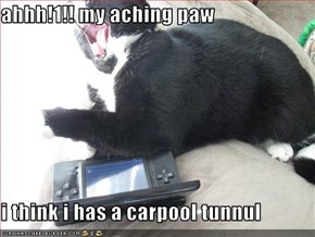 ahhh!1!! my aching paw  i think i has a carpool tunnul