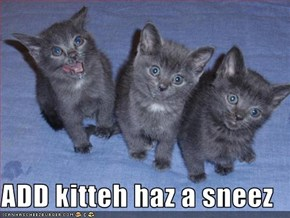 ADD kitteh haz a sneez